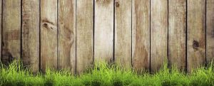 Fence Staining and Repair Plano