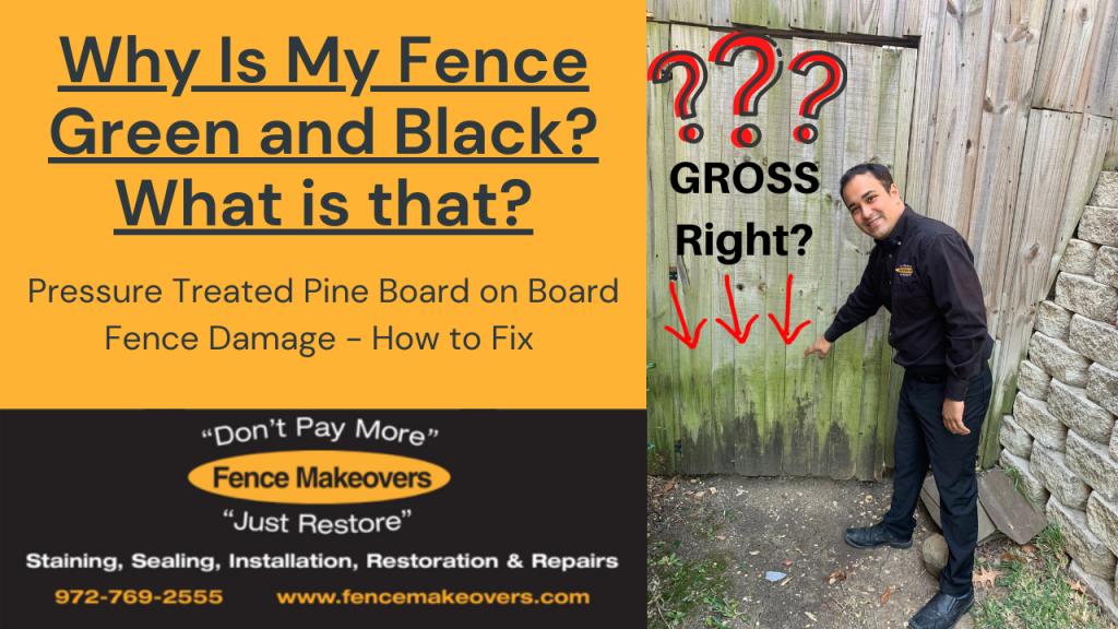 Pressure treated pine board on board fence repair