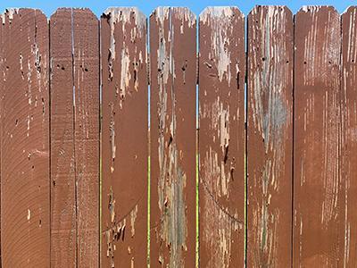 Peeling Latex Stain Fence 1